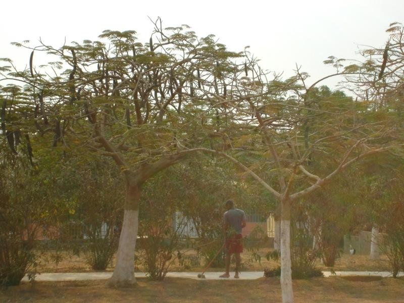 luanda-028